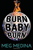 Best Multicultural Young Adult Novels: Burn Baby Burn