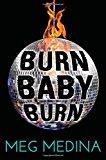 Best Multicultural Young Adult Novels: Burn Baby Burn